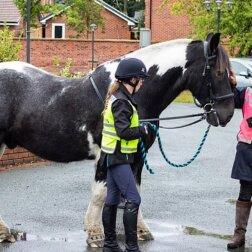 Pożegnanie nieuleczalnie chorej właścicielki: konia i psa przywieziono prosto do hospicjum