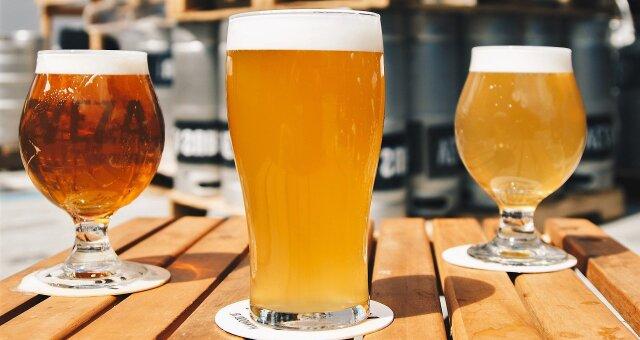 zobacz jak piwo wplywa na twoj organizm