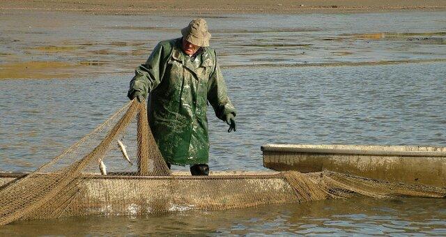 rybak znalazl wymiociny warte fortune