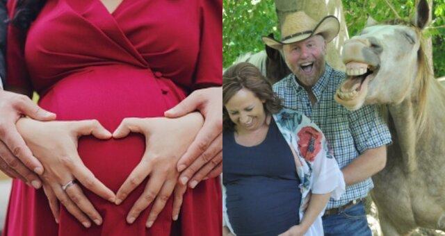 sesja ciążowa koń